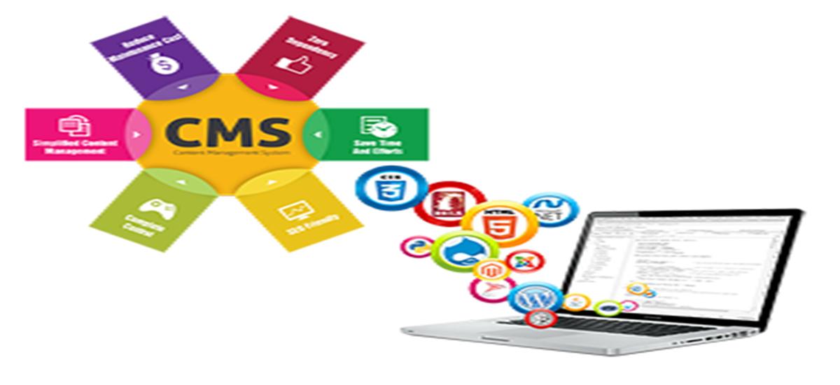 CMS | Ally Labs Technologies Pvt Ltd, Pune